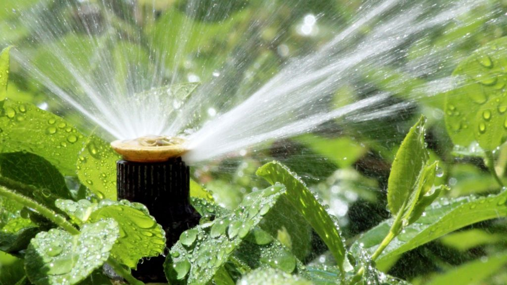 How To Maintain Your Commercial Irrigation System