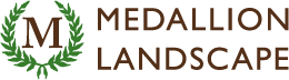 Medallion_Logo_Horizontal_2